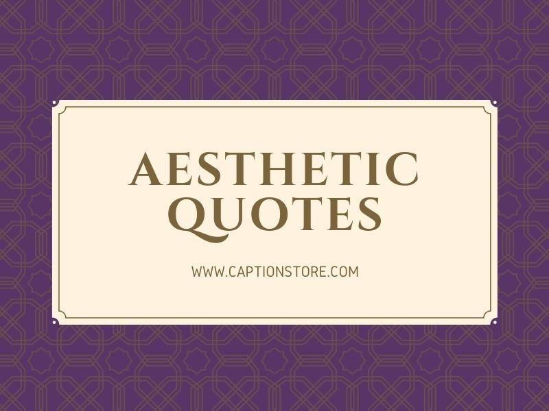 Aesthetic quotes-Instagram,Text,Soft,Girls,Boys,About Life