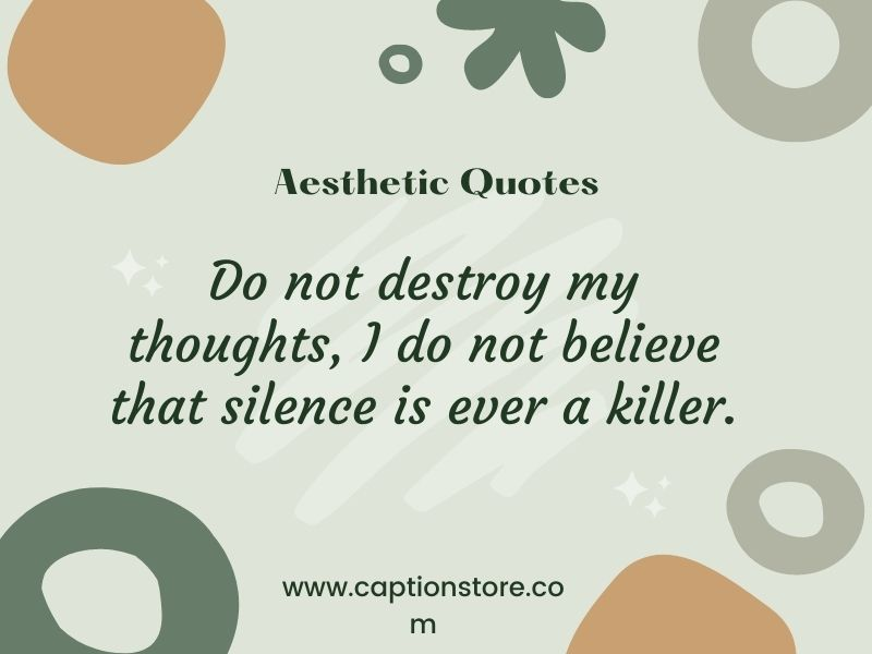Aesthetic quotes text